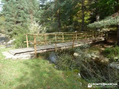 Parque Natural Sierra de Cebollera (Los Cameros) - Acebal Garagüeta;rutas excursiones tiendas de mo